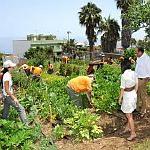 Fermierii buzoieni sunt in asteptarea ajutorului de minimis pentru agricultura ecologica!